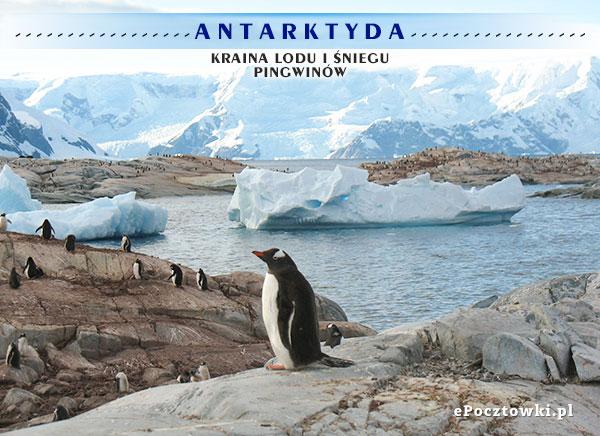 Antarktyda - Kraina lodu