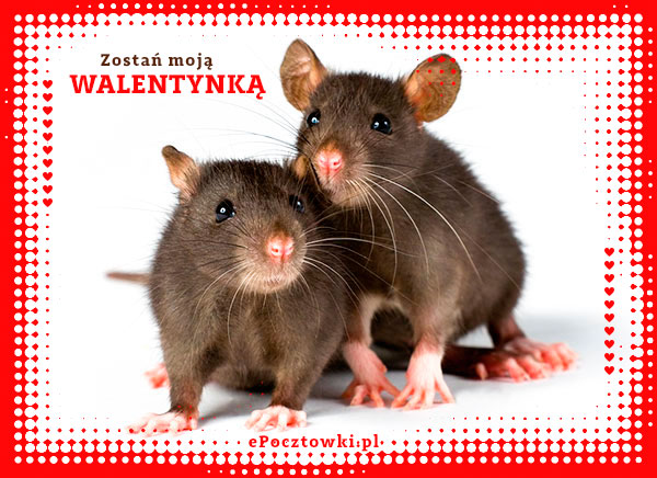 Moja Walentynko!
