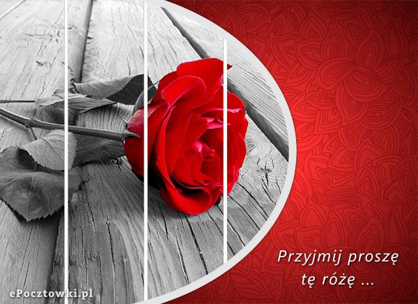 Przyjmij proszę tę różę