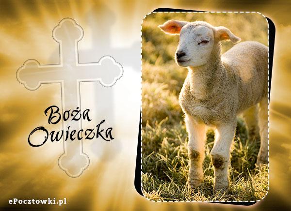 Boża Owieczka